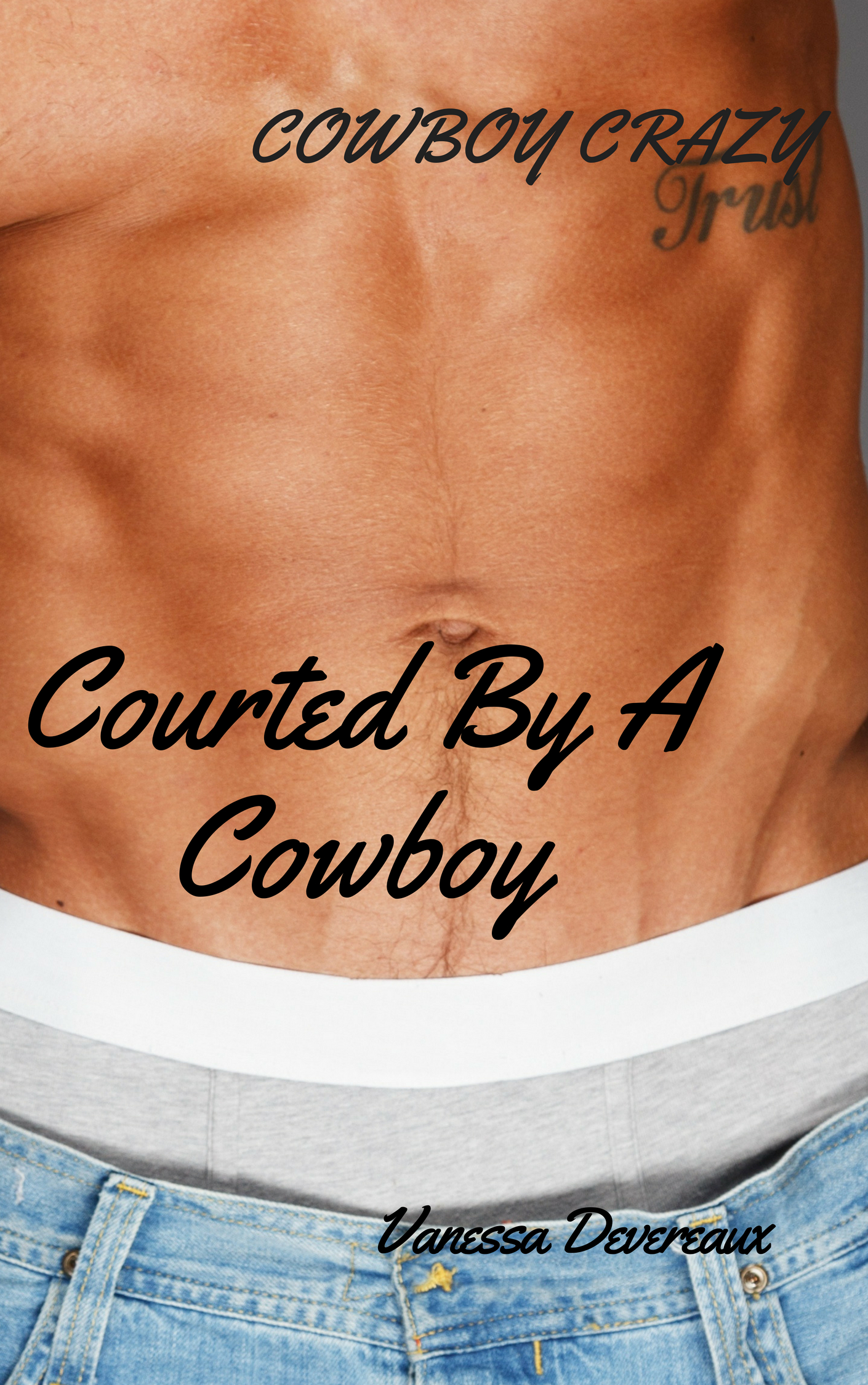 Courted By A Cowboy2